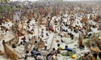 The fishing festival in Nigeria's Kebbi state.