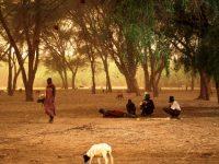 Kenya. A Horizon-less Frying Pan