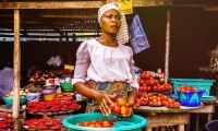 Nigeria. Woman holding tomatoes in a market in Lagos.