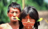 The Yanomami. They live in the rainforests and mountains of northern Brazil and southern Venezuela. Their population today is around 32,000 people.