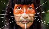 The Matsés or Mayoruna. They live in the Peruvian and Brazilian Amazon. They are approximately 3,200 people.