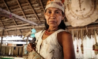 The Ticuna. They are the most numerous tribe in the Brazilian Amazon. Around 36,000 people.
