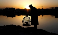 Afghanistan. A man with his caged partridge at sunrise in Kabul.