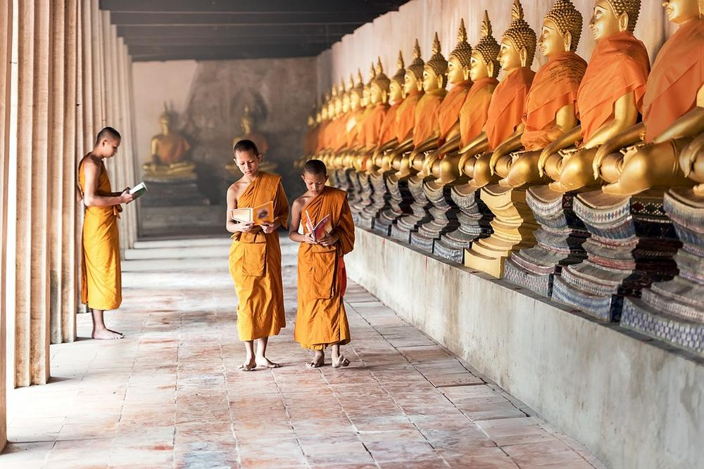 Knowing yourself to be ignorant, you will eventually become wise. (Cambodian Proverb)