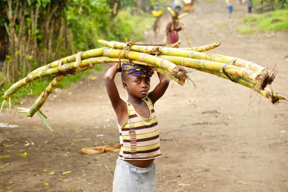 Agriculture accounts for 60 percent of child labour.