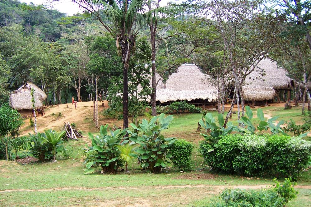 Typical Embera village. Houses are built on stilts along the rivers.
