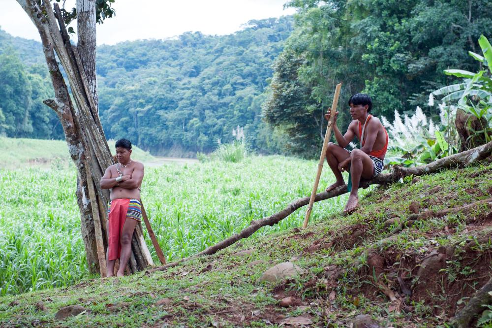 Embera young people. Most of the Embera lands were declared a national park in 1994.