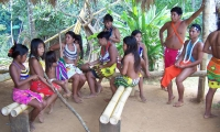 The Embera are a community of 22,000 people.
