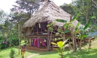 Embera house with the characteristic conical roof.