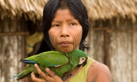 In our language, wisdom is called 'arandù', which means 'to feel time'. (Guarani, Brazil)