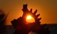 You cannot hide the sun with one hand. (Colombia)