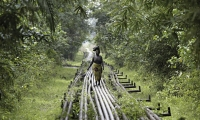 Woman walking on the Shell oil pipelines