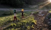 Children carrying water containers home from a water source.