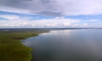 Bangweulu Lake is a freshwater lake in Zambia.