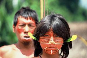 Indigenous People of the Amazon Rainforest